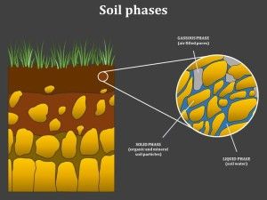 fase-tanah