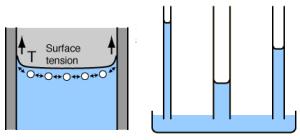 tegangan-air-permukaan